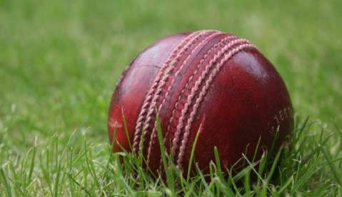 cricket-ball.600