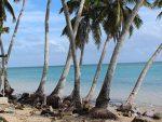 Ha'apai-Tonga-IMG_2376_0